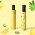 NHNN2152882-8-bone-automatic-lemon-[vinyl]-Fully-a